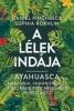 A Lélek Indája - Ayahuasca